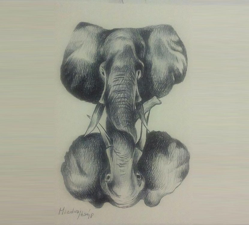 Gift for the Elephant Minds Foundation